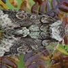 Žaliarudis vėlyvis - Allophyes oxyacanthae | Fotografijos autorius : Žilvinas Pūtys | © Macrogamta.lt | Šis tinklapis priklauso bendruomenei kuri domisi makro fotografija ir fotografuoja gyvąjį makro pasaulį.