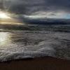Baltijos jūra | Fotografijos autorius : Gintautas Steiblys | © Macrogamta.lt | Šis tinklapis priklauso bendruomenei kuri domisi makro fotografija ir fotografuoja gyvąjį makro pasaulį.