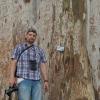 Gintas Batumio botanikos sode | Fotografijos autorius : Žilvinas Pūtys | © Macrogamta.lt | Šis tinklapis priklauso bendruomenei kuri domisi makro fotografija ir fotografuoja gyvąjį makro pasaulį.