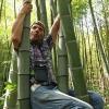 Kažkokia panda tarp bambukų | Fotografijos autorius : Gintautas Steiblys | © Macrogamta.lt | Šis tinklapis priklauso bendruomenei kuri domisi makro fotografija ir fotografuoja gyvąjį makro pasaulį.