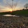 Saulėlydis 2 | Fotografijos autorius : Gintautas Steiblys | © Macrogamta.lt | Šis tinklapis priklauso bendruomenei kuri domisi makro fotografija ir fotografuoja gyvąjį makro pasaulį.
