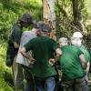 Vyrų medis ... | Fotografijos autorius : Darius Baužys | © Macrogamta.lt | Šis tinklapis priklauso bendruomenei kuri domisi makro fotografija ir fotografuoja gyvąjį makro pasaulį.