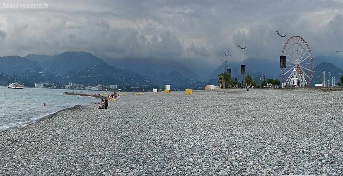 Batumio papludimys..   Fotografijos autorius : Gintautas Steiblys   © Macrogamta.lt   Šis tinklapis priklauso bendruomenei kuri domisi makro fotografija ir fotografuoja gyvąjį makro pasaulį.