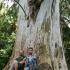 Batumio botanikos sodas. 2 | Fotografijos autorius : Gintautas Steiblys | © Macrogamta.lt | Šis tinklapis priklauso bendruomenei kuri domisi makro fotografija ir fotografuoja gyvąjį makro pasaulį.