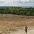 Darius Naglių kopose | Fotografijos autorius : Gintautas Steiblys | © Macrogamta.lt | Šis tinklapis priklauso bendruomenei kuri domisi makro fotografija ir fotografuoja gyvąjį makro pasaulį.