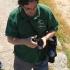 Deivis ruošiasi ieškoti orchidėjų   Fotografijos autorius : Gintautas Steiblys   © Macrogamta.lt   Šis tinklapis priklauso bendruomenei kuri domisi makro fotografija ir fotografuoja gyvąjį makro pasaulį.
