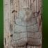 Trijuostis naktinukas - Charanyca trigrammica   Fotografijos autorius : Žilvinas Pūtys   © Macrogamta.lt   Šis tinklapis priklauso bendruomenei kuri domisi makro fotografija ir fotografuoja gyvąjį makro pasaulį.