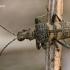 Dygusis ragijus - Rhagium mordax  | Fotografijos autorius : Gintautas Steiblys | © Macrogamta.lt | Šis tinklapis priklauso bendruomenei kuri domisi makro fotografija ir fotografuoja gyvąjį makro pasaulį.