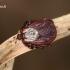 Dermacentor reticulatus - Pievinė erkė | Fotografijos autorius : Lukas Jonaitis | © Macrogamta.lt | Šis tinklapis priklauso bendruomenei kuri domisi makro fotografija ir fotografuoja gyvąjį makro pasaulį.