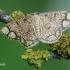 Stegania [=Lomographa] cararia - Rudlankis sprindžius | Fotografijos autorius : Arūnas Eismantas | © Macrogamta.lt | Šis tinklapis priklauso bendruomenei kuri domisi makro fotografija ir fotografuoja gyvąjį makro pasaulį.