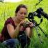Rimta ir susikaupusi  | Fotografijos autorius : Romas Ferenca | © Macrogamta.lt | Šis tinklapis priklauso bendruomenei kuri domisi makro fotografija ir fotografuoja gyvąjį makro pasaulį.