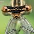 Baltakojė strėliukė - Platycnemis pennipes | Fotografijos autorius : Oskaras Venckus | © Macrogamta.lt | Šis tinklapis priklauso bendruomenei kuri domisi makro fotografija ir fotografuoja gyvąjį makro pasaulį.