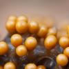 Įvairusis krekenis - Trichia varia | Fotografijos autorius : Žilvinas Pūtys | © Macrogamta.lt | Šis tinklapis priklauso bendruomenei kuri domisi makro fotografija ir fotografuoja gyvąjį makro pasaulį.