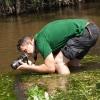 Gaujos upėje | Fotografijos autorius : Žilvinas Pūtys | © Macrogamta.lt | Šis tinklapis priklauso bendruomenei kuri domisi makro fotografija ir fotografuoja gyvąjį makro pasaulį.