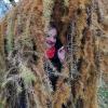 Parke (3) | Fotografijos autorius : Nomeda Vėlavičienė | © Macrogamta.lt | Šis tinklapis priklauso bendruomenei kuri domisi makro fotografija ir fotografuoja gyvąjį makro pasaulį.