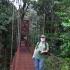 Monteverde lajų take | Fotografijos autorius : Giedrius Švitra | © Macrogamta.lt | Šis tinklapis priklauso bendruomenei kuri domisi makro fotografija ir fotografuoja gyvąjį makro pasaulį.